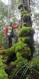 Bukit Raya1